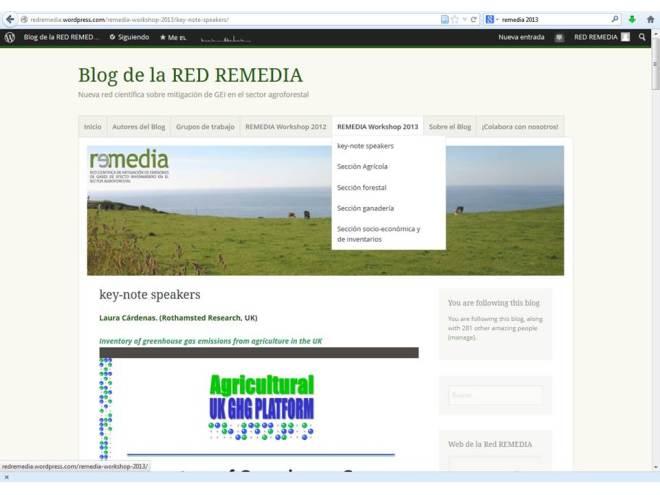 remedia2013