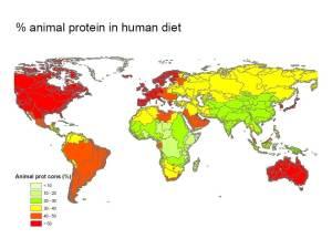 Fracción de proteínas animales en la ingesta total de proteínas (datos de GobalNEWS y FAOstat; Billen et al. 2013)