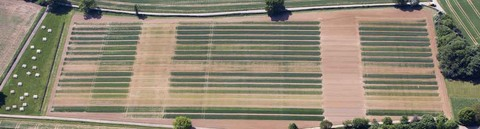 5184-Aerial-photographs-of-Rothamsted-site,-June-2013-Broadbalk-01_0