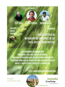 poster remedia Madrid 2015