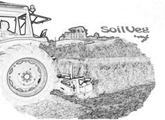 soilveglogo