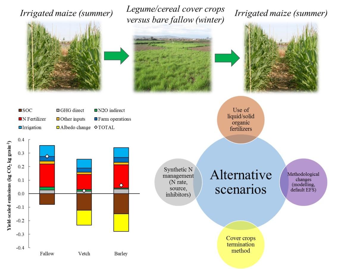 Los cultivos cubierta: una estrategia de mitigación del cambio climático en cultivos herbáceos